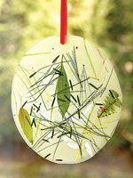 Nature craft: contact sheet window decoration
