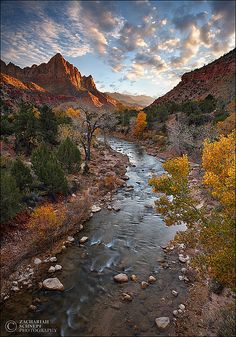 ✯ The Watchman - Zion National Park - Utah
