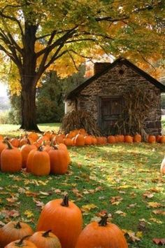this picture is PURE bliss to me, I can smell the cinnamon candles burning :) fall leaves, barn, stone cottages, season, autumn, fall harvest, fall time, fall pumpkins, place