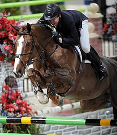 McLain Ward's Sapphire to be retired.