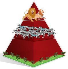 Food Chains & Food Webs energy pyramid, biomass pyramid
