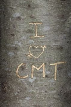 Carve your initials virtually into a tree with this app. Awwww...