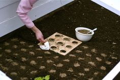 Square Foot Gardening Templates
