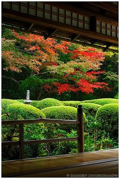 Shisen-do in autumn, Kyoto, Japan