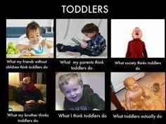 What I think I do...Toddler meme.