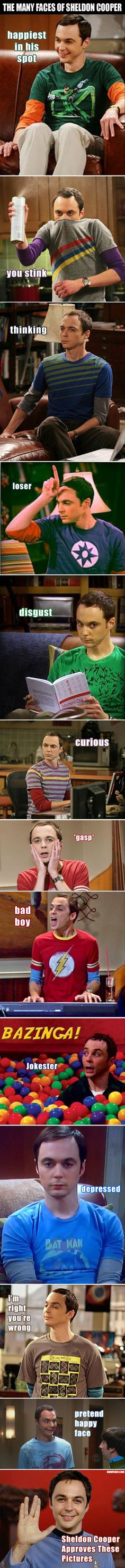 The Many Faces Of Sheldon Cooper