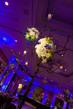 Pure Joy flowers Weddings Royal Blue on Pinterest
