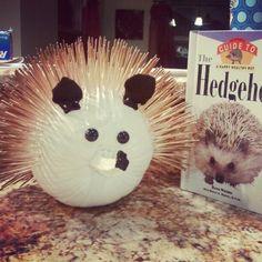 pumpkin book characters   hedgehog pumpkin for my daughter's book character ...   Pumpkins Ideas