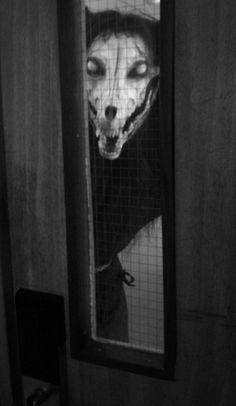 Animal skulls + eyes = scary