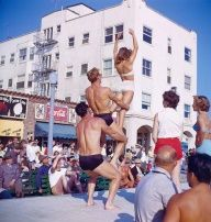 vintage everyday: Bodybuilders at Muscle Beach, California, c. 1950s beaches, 1950s, vintage, vintag everyday, muscles, vintag bodybuild, muscle beach california, muscl beach