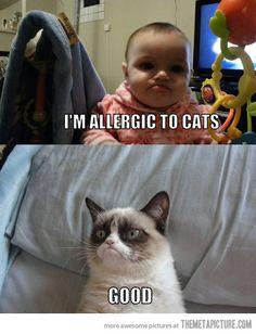 Grumpy Baby meets Grumpy Cat…