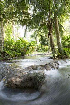 Climb Dunn's River Falls in Jamaica.