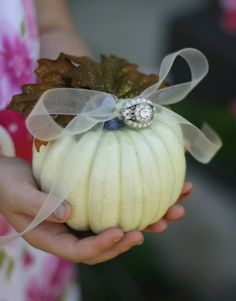 ring bearer pillow images - Google Search - very interesting for a fall wedding! This could be decorated with same flowers and then more ribbons to tie ring on. Very different!