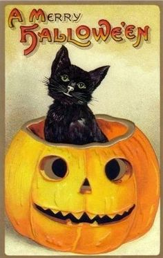 Halloween Cat 6 by VintageImagesonEtsy on Etsy, $1.75