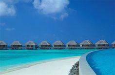 Dusit Thani Maldives_Pool & Villas
