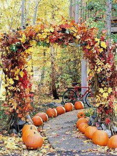Beautiful Halloween inspired arch
