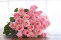 Beautiful #pinkroses!