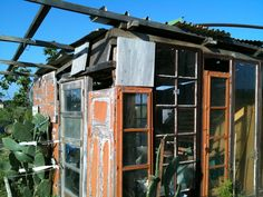 Paco's green house... the simplest form of self sufficiency in the south of France.