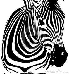 tło-zebra-14771741.jpg (800×860)
