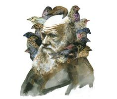 Darwin and the birds