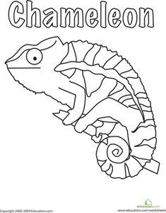 First Grade Animals Worksheets: Color the Chameleon!