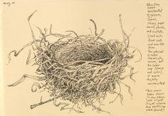 vintage black and white nest illustration