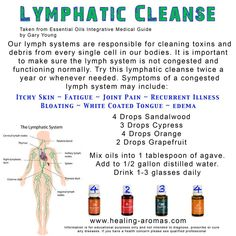 Young Living Essential Oils: Lymphatic Cleanse Skin Fatigue Joint Pain Bloating Thrush Edema