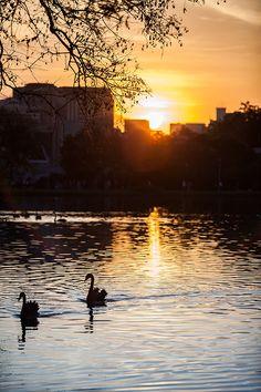 Sunset at Ibirapuera Park