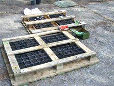 pallets filled with flower pots. ☀CQ #backyard #garden