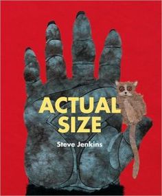 animals, crocodiles, steve jenkin, fiction books, picture books, children books, big books, eyes, actual size