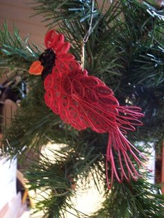 bird, red, quill cardin, quilling, cardin ornament, christmas ornaments, christmas trees, christmas tree ornaments, cardinals