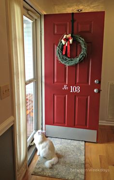 Red Front Door - paint color - Posh Red, Valspar. Not the kick plate, I like the number on the door