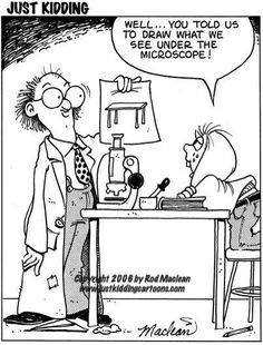 Under the Microscope ....
