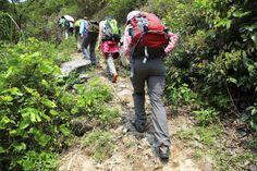 mountain outdoor, mountain adventur, smoki mountain