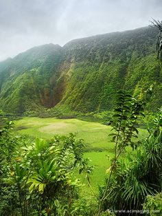 Waihilau Falls, Waimanu Valley - Big Island,  Hawaii