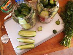 Refrigerator Dill Pickles! Yum