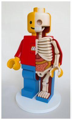 Lego© Men Dissections