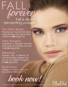 Salon marketing on pinterest salon promotions salon for Beauty salon xmas offers