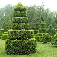 The art of topiary