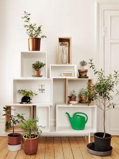 Stacked shelf