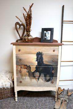 passion pour les chevaux meuble transform natacha cr ative. Black Bedroom Furniture Sets. Home Design Ideas