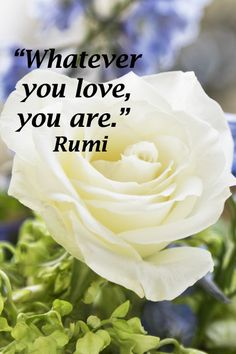 """""""Whatever you love, you are.""""  Rumi"""