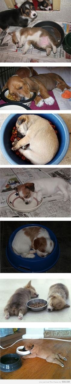 Eating is tiresome....