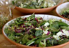 vegetable salads, homestead reviv, vegetables, cabbag salad, homesteads