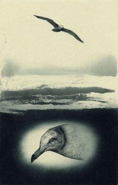 PRINT SHOW artist:No.45 若月公平 WAKATSUKI Kohei 「風と雲と太陽と」 エッチング、アクアチント 17.0×11.0cm etching, aquatint
