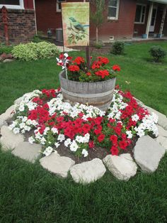 This flower bed has been re-purposed following the removal of a tree. The whiskey barrel was placed on the tree stump. Then petunias were planted in the flowerbed. The cement blocks were gathered from an old driveway.
