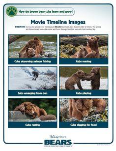 Movie Timeline Images