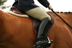 I miss my horse. I miss riding. I miss riding english...