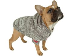 OMG Sock Monkey dog sweater... must... have...