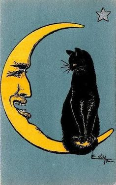 vintage postcard, crescent moon & black cat
